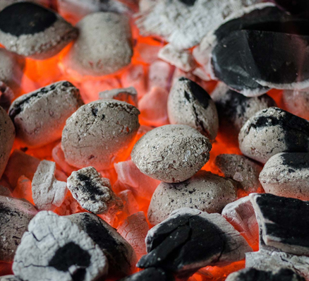 Firewood & Charcoal