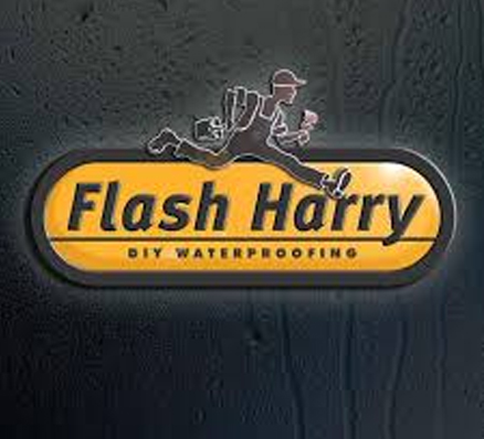 Flash Harry